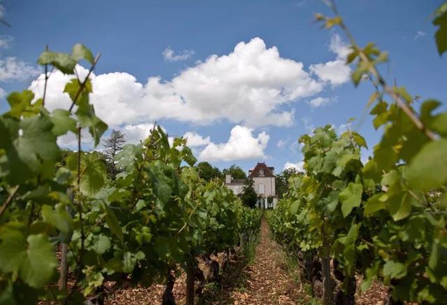 2010年份 列級莊,特級園,DOCG,法意三大產區高分酒 - 每日頭條