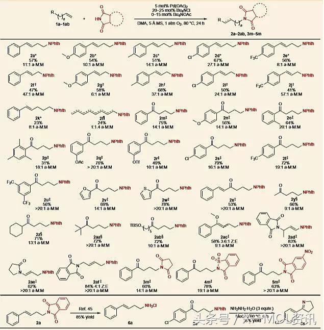 鈀催化反馬氏規則的烯烴選擇性氧化胺化 - 每日頭條