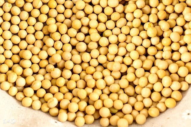 紅豆。綠豆。黃豆生活中的豆類你都怎麼吃?豆類功效百科小解 - 每日頭條