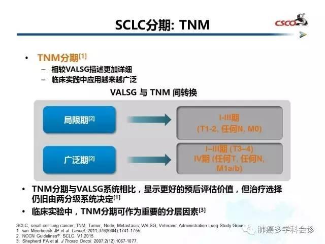 小細胞肺癌的治療策略解讀 - 每日頭條