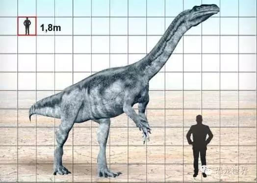 板龍:三疊紀最大的恐龍 - 每日頭條