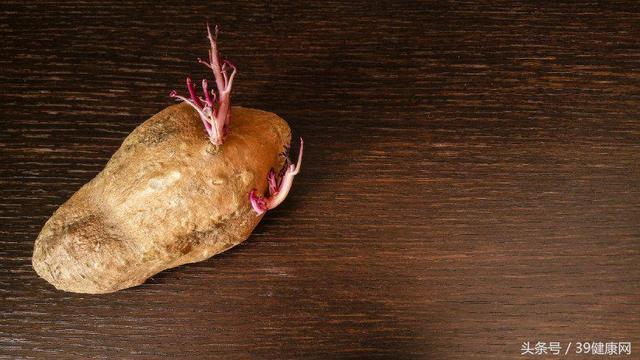 發芽的食物毒似砒霜?發芽土豆絕對不能吃。但其他蔬菜呢 - 每日頭條