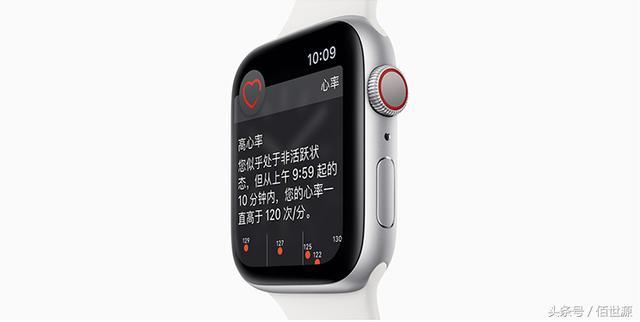 新Apple Watch實時心電圖功能並不能作為檢查報告 - 每日頭條