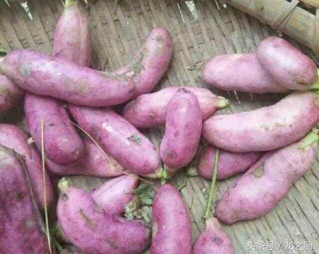農民樹上採摘的「番薯」一斤可賣45元,自己都捨不得吃! - 每日頭條