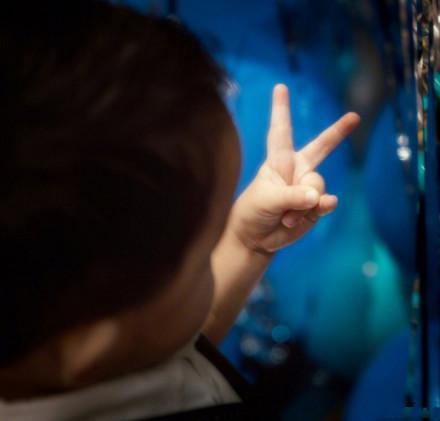 佟麗婭現身唐人街探案2,看來原諒陳思誠了,朵朵要開心長大呀! - 每日頭條
