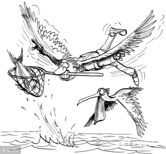 魚與熊掌不可兼得 - 每日頭條