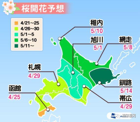 2018年全日本櫻花開放預測時間公布。大家又可以愉快的賞櫻啦 - 每日頭條