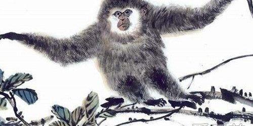 屬猴人2019年害太歲是什麼意思 - 每日頭條
