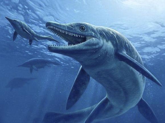 驚!! 遠古十大海洋兇猛巨獸排名。鄧氏魚竟然未能上榜 - 每日頭條