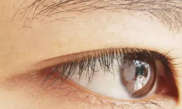 身體不好眼先知 眼部出現以下五種不適 需重視了 - 每日頭條