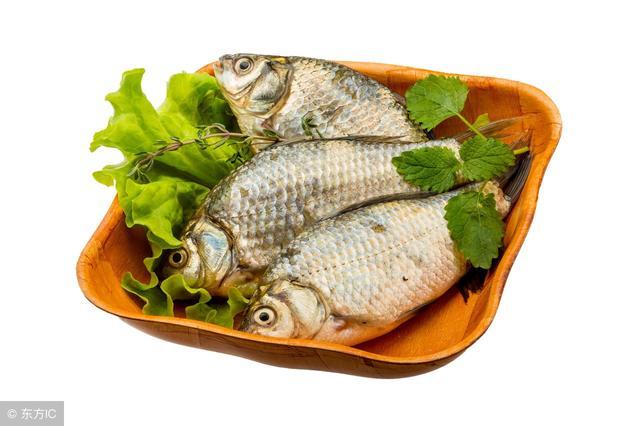 大家都知道鯽魚營養高。食用鯽魚的8大禁忌你知道嗎? - 每日頭條