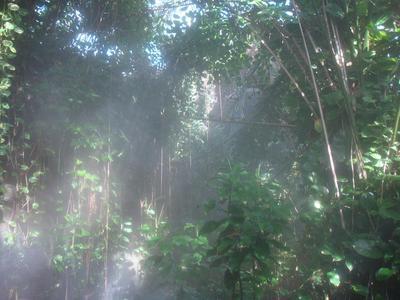 「生物圈」2號計劃:令人失望的希望之旅 - 每日頭條