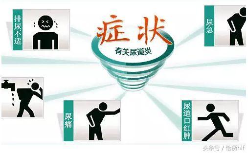 尿急!尿痛!尿頻!尿道炎反反覆復?幾種簡單的方法為你有效預防 - 每日頭條