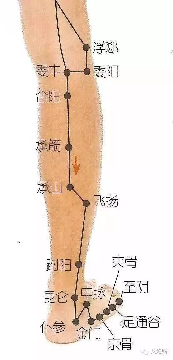 跗陽穴:治療腳氣,頭痛,外踝腫痛等 - 每日頭條