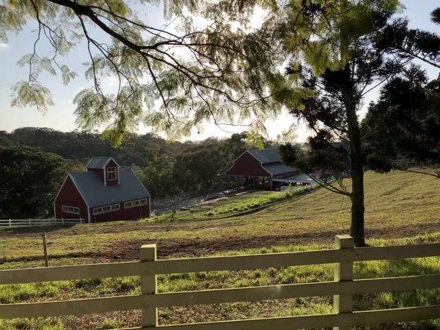 飛牛牧場,一座把休閒農莊推向世界的牧場 - 每日頭條