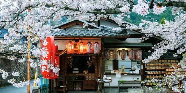 |日本觀光注意事項篇|納尼,你竟然不知道這些,糟心透了! - 每日頭條
