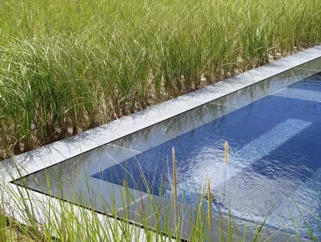 以生態修復為主導的景觀設計 - 每日頭條
