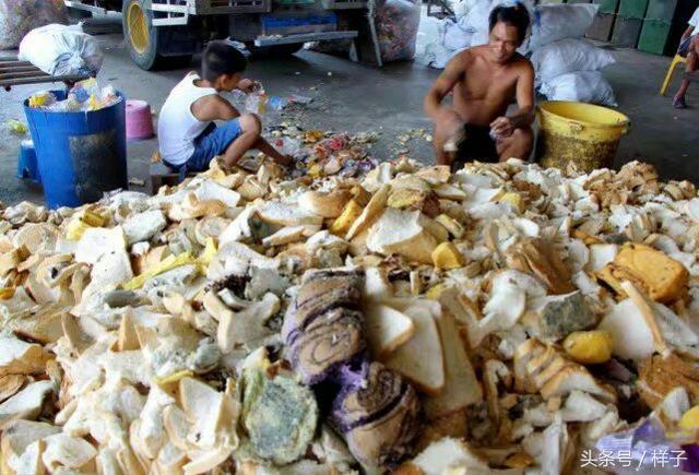 這裡的過期麵包被漁民們用來餵魚。網友:中國的超市卻在這樣做! - 每日頭條