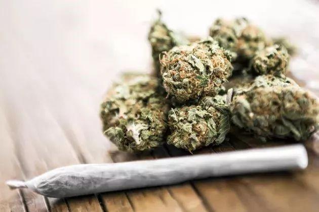 加國大麻合法化。將危害中國多少人?七問大麻合法化 - 每日頭條