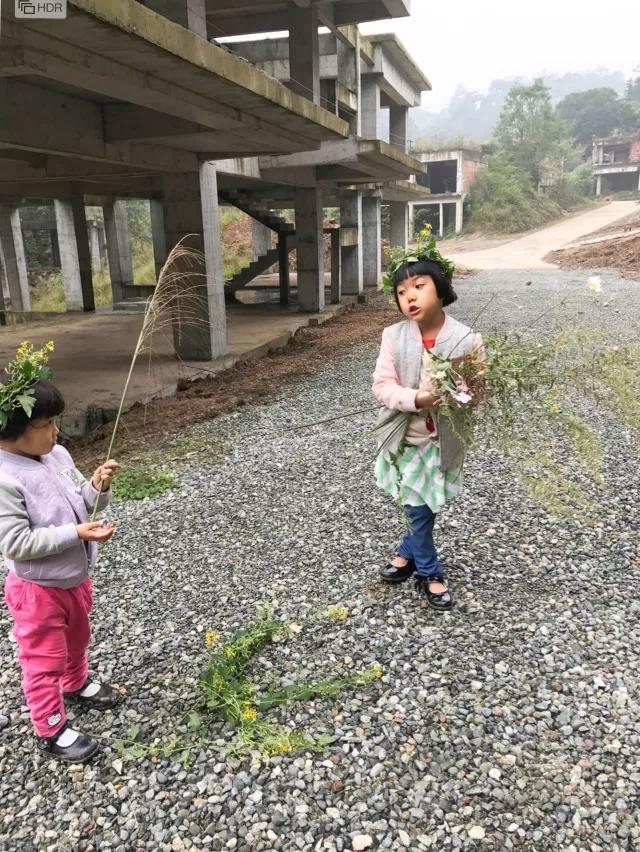 海媽園藝課堂|第19課 花藝生活 - 每日頭條