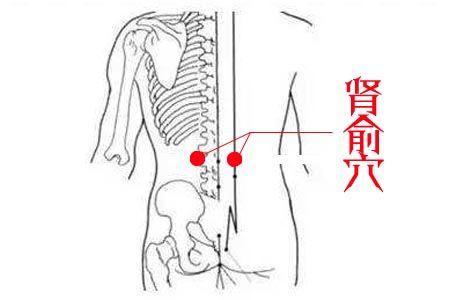 腎虛腰疼。補腎養生無非這4穴位。會用的人健康常伴 - 每日頭條
