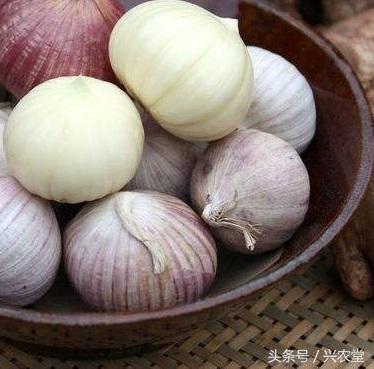 獨頭蒜好吃,而是發育不良的變形蒜頭,蒜頭進口數量減少,要求真多 - 每日頭條