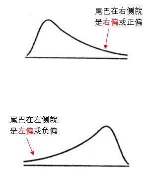這到底是左偏啊還是右偏?私授你偏態分布的正確讀取方式 ...