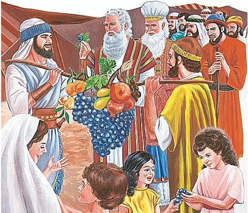 聖經揭秘 民數記 十二個探子 耶和華懲罰埋怨民眾 - 每日頭條