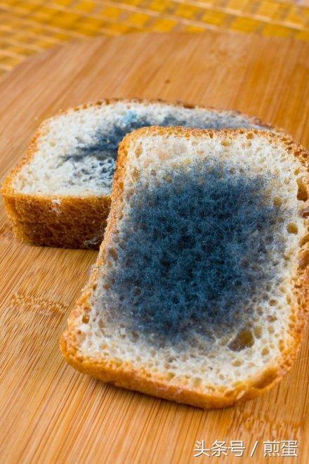 如果吃了發霉的麵包會怎樣 - 每日頭條