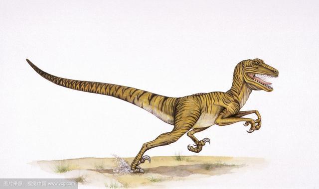 三疊紀的恐龍明星 - 每日頭條