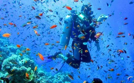 全球最驚艷的10個潛水勝地。看到第一個就想出發! - 每日頭條