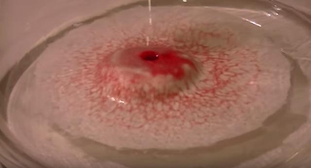 男子將「鮮血滴入十倍濃度的雙氧水中」。之後的反應讓人驚掉下巴 - 每日頭條