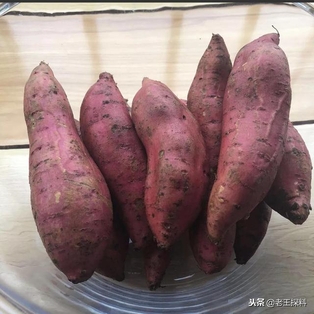 北方的農村冬季吃的最多的蔬菜和野菜有哪些? - 每日頭條