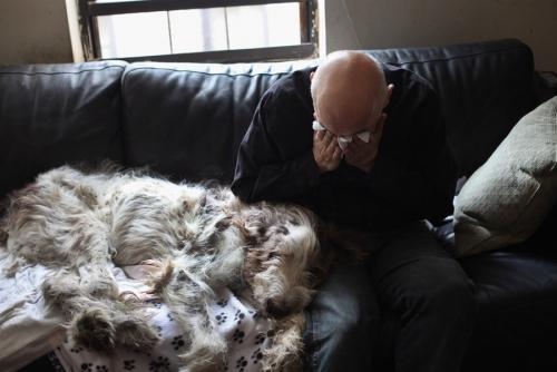 實拍寵物狗安樂死全過程。主人留下傷心的眼淚 - 每日頭條