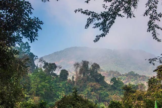 雲南有座小城,比西雙版納美,比緬甸舒服,卻很少人知道 - 每日頭條
