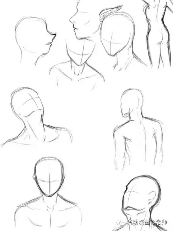 正臉,側臉的畫法,畫五官得先學畫臉 - 每日頭條