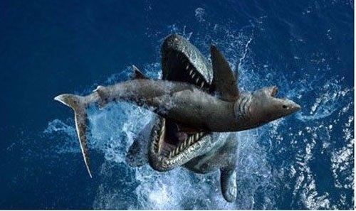太元前最頂尖的大洋殺手。被稱為「白堊紀咽喉」 - 每日頭條
