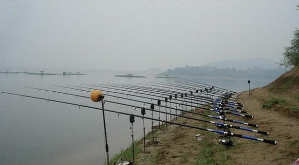 新手學釣魚:如何挑選一支適合自己的好魚竿? - 每日頭條