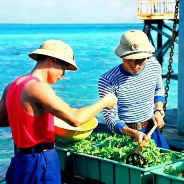 30年來南沙守礁的解放軍都吃啥? - 每日頭條