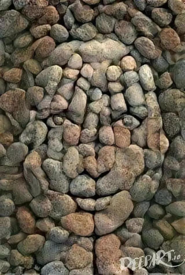 罕見的石頭畫。太有創意了 - 每日頭條
