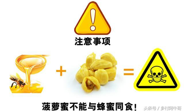 被譽為「熱帶水果皇后」的菠蘿蜜。有4類人群不能吃! - 每日頭條
