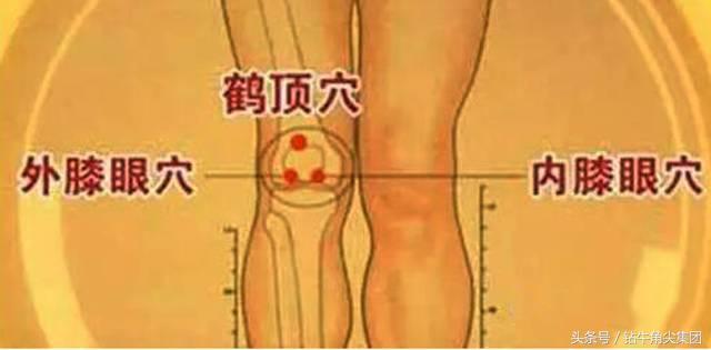 一把鑽牛角尖牛角梳子「梳走」9種疾病! - 每日頭條