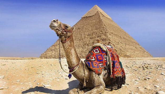 尋找前世之旅,去埃及旅遊就是為了見見拉美西斯二世 - 每日頭條