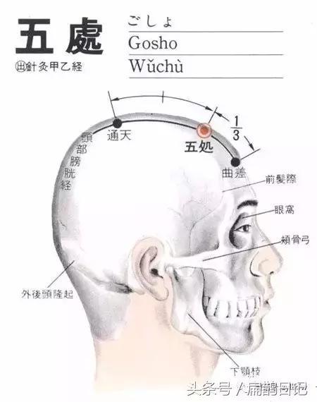人體穴位大全——五處穴:頭痛,癲癇,目眩等 - 每日頭條