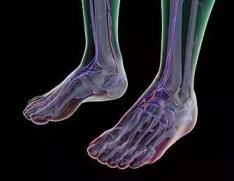 腳後跟老痛?可能意味著你有這些問題 - 每日頭條