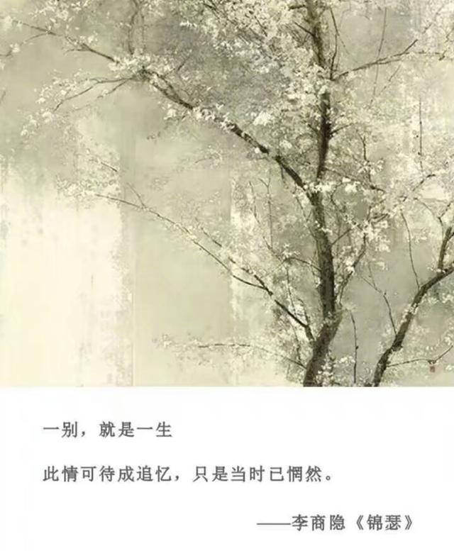 我讀過最美的詩句,你不來我不老 - 每日頭條