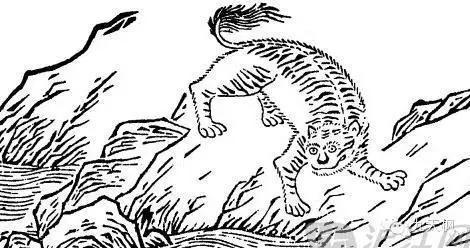 《山海經》中的彘和鮆魚 - 每日頭條