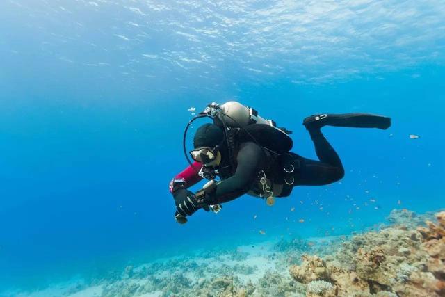 一證在手 潛遍全球 PADI認證潛水證(普吉島含宿攻略) - 每日頭條