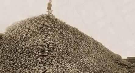 武將為何對築京觀念念不忘?幾十萬華夏好男兒曾被他國築京觀 - 每日頭條