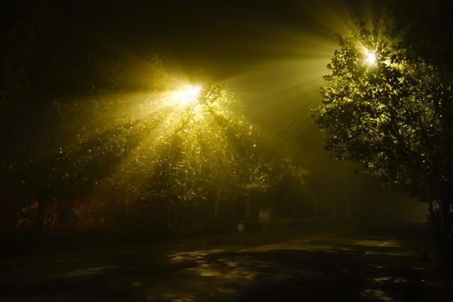 大霧連續籠罩北方城市 「丁達爾現象」光影迷人 - 每日頭條